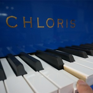 Chloris-keyboard-blue